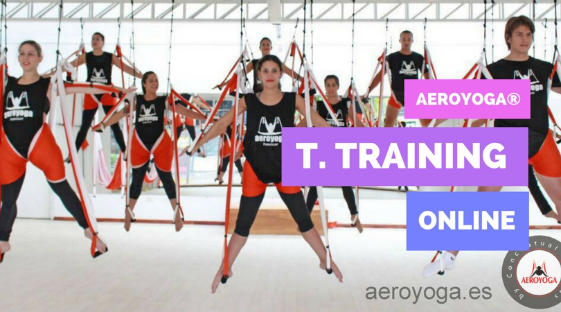 Yoga Swing: The 5 Most Frequently Asked Questions about the Online AeroYoga® Teachers Training