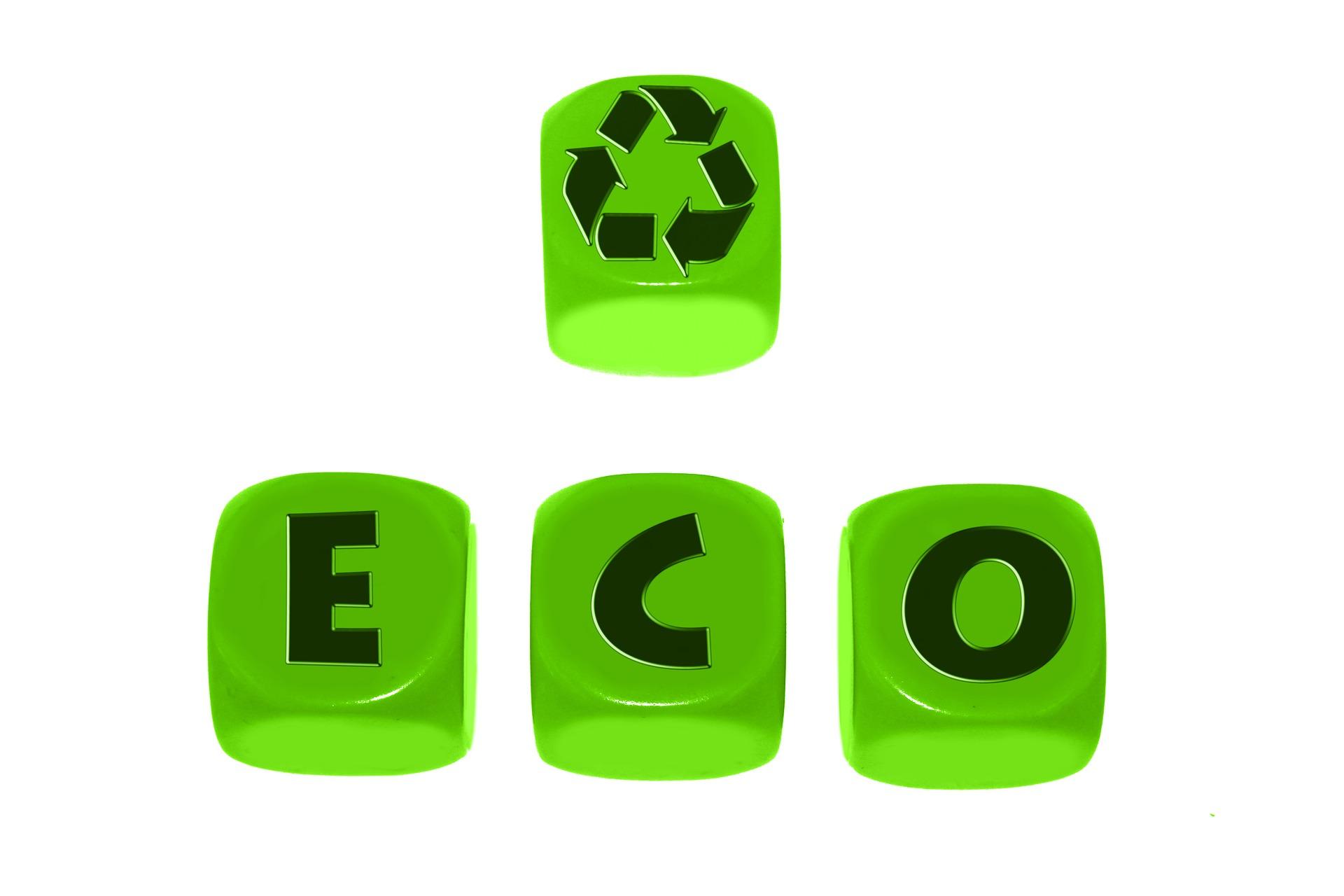 Elimina las Toxinas de tu Cuerpo y de tu Entorno, Ecología