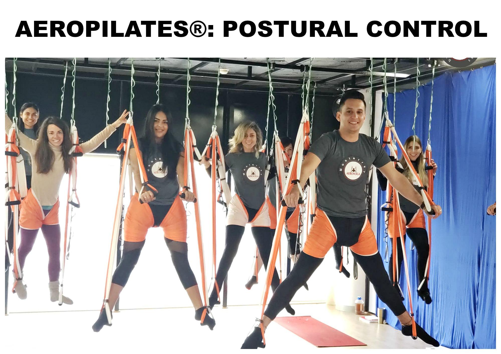 Aerial Pilates: AeroPilates® a Method for Health and Postural Control