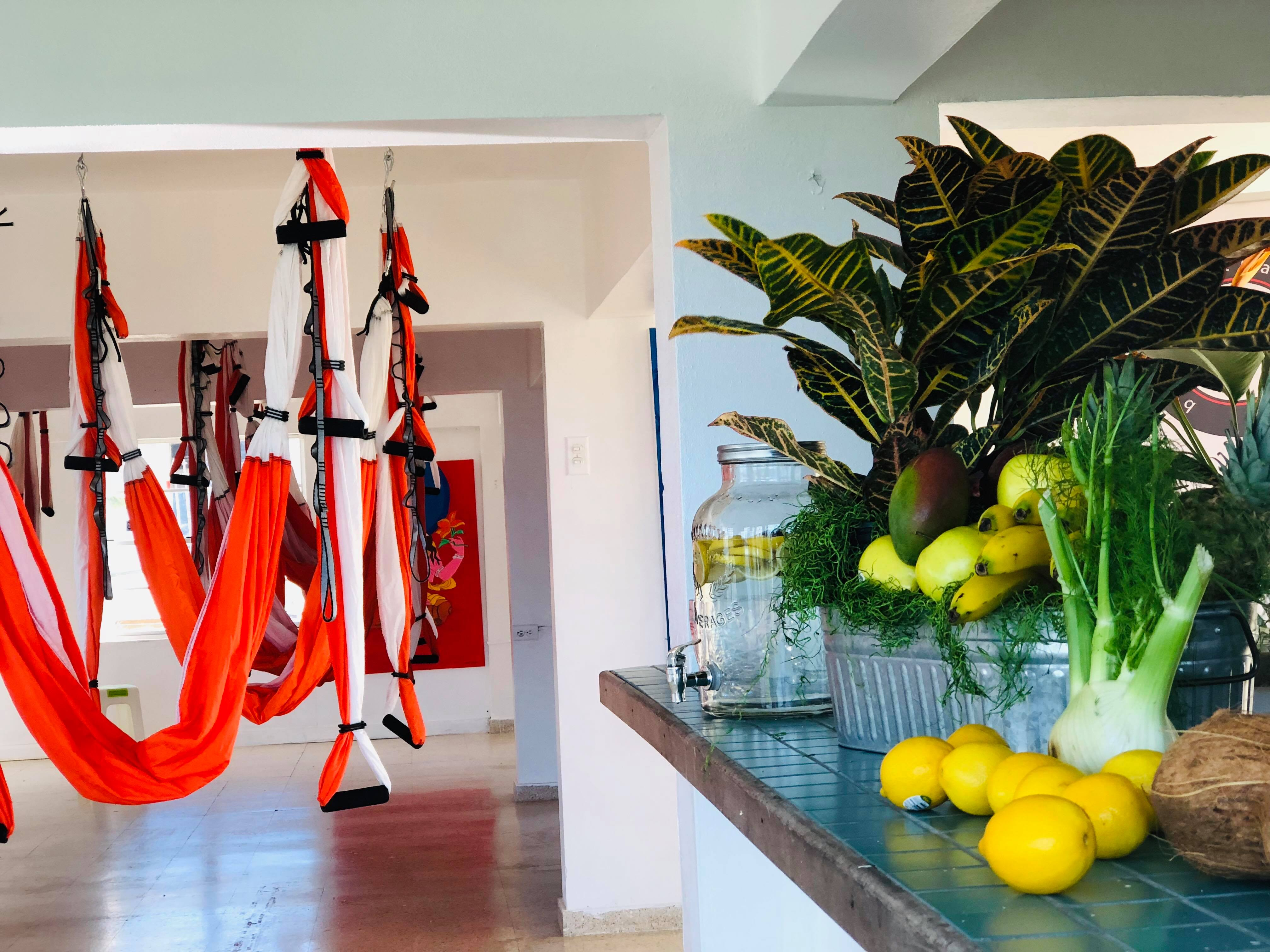 Yoga Aéreo: Inauguramos AeroYoga ® Institute Puerto Rico!