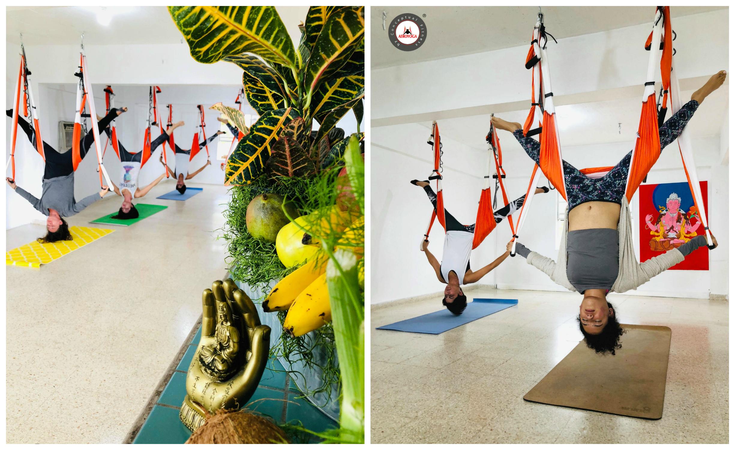 Aerial Yoga Teacher Training, Inaugurado el Nuevo AeroYoga ® Institute Puerto Rico, Fly!