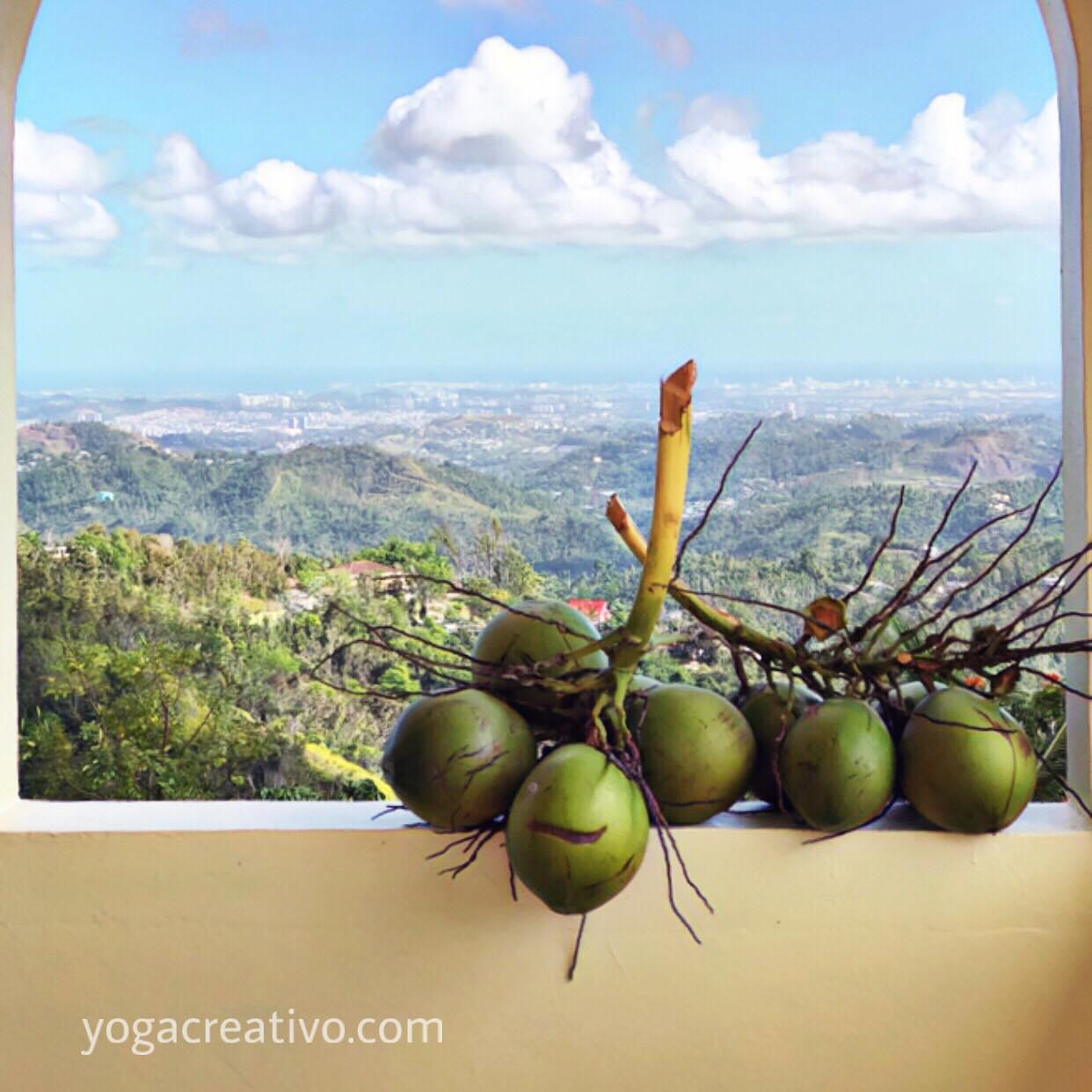 AeroYoga ® Institute; Descubre los Beneficios Salud del Agua de Coco con el Ayurveda