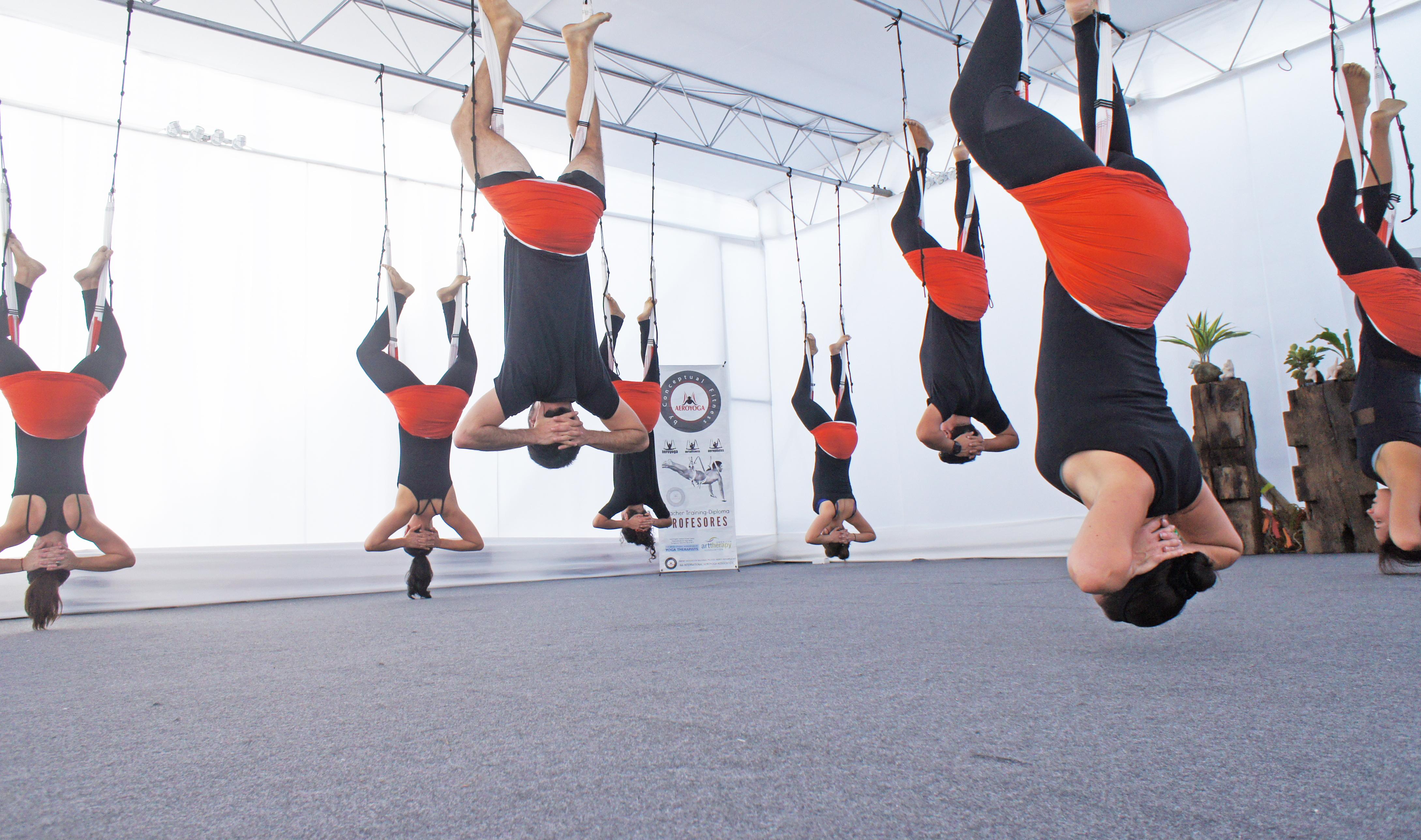 Formación Yoga Aéreo, Descubre la Unión Aérea entre AeroYoga® y Ayurveda