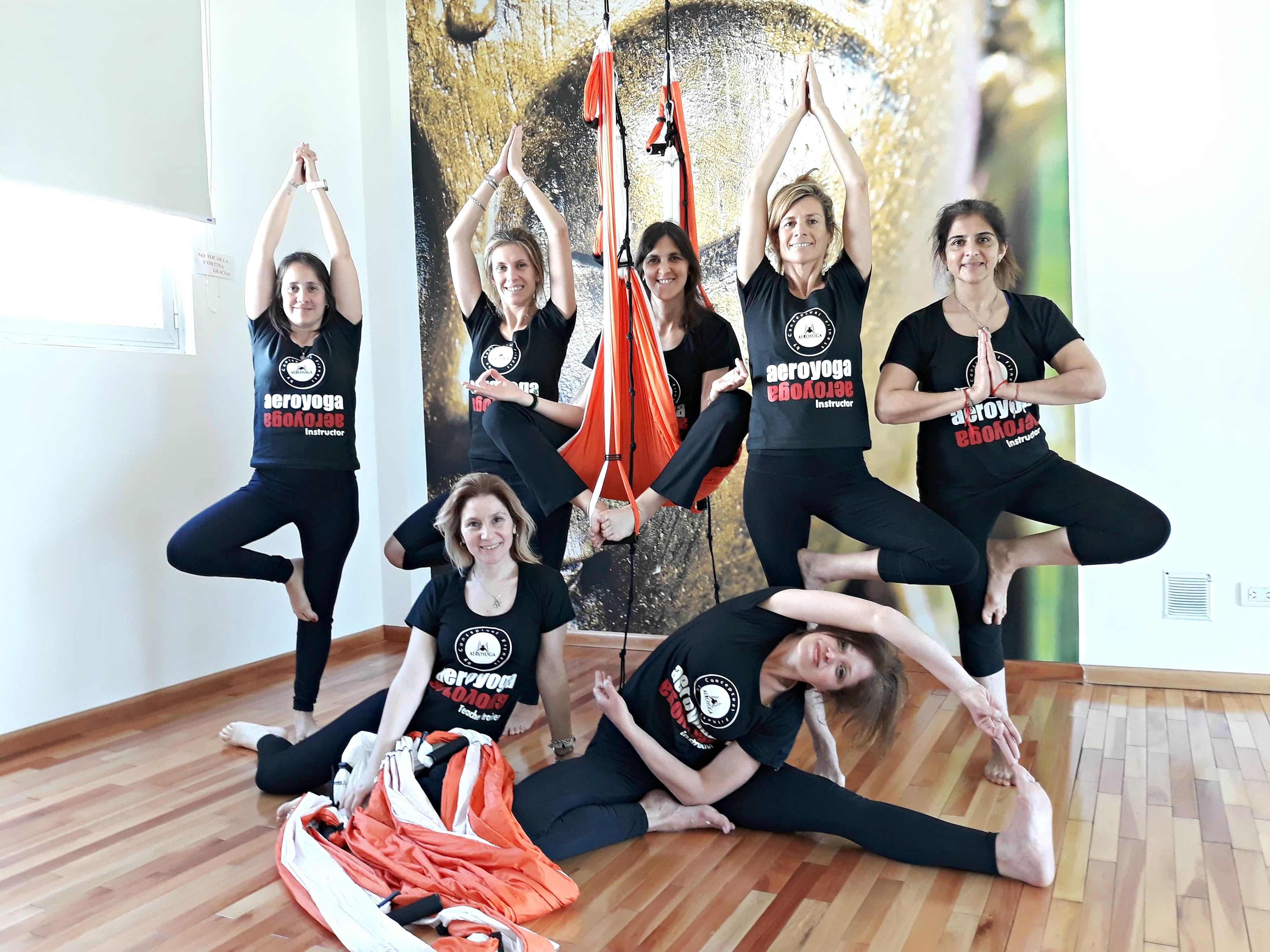 Yoga Aéreo, Album de Nuestro Último Curso Profesores AeroYoga®, Formación Profesional