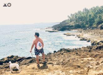 Yoga Aéreo Teacher Training Puerto Rico, Conviértete en Profesor de AeroYoga ®