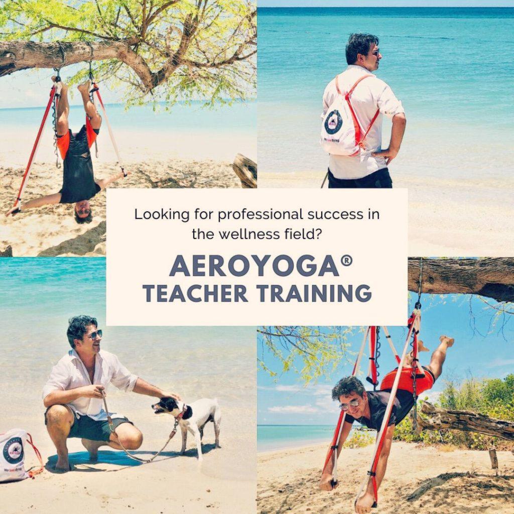 formación yoga aérea